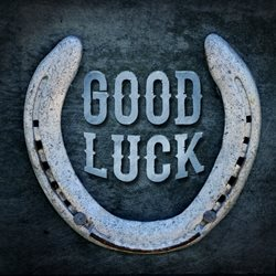 Good luck general horseshoe, good luck, blue personalised online greeting card