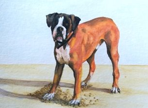 art artwork dogs animals pets for-him for-her personalised online greeting card