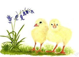 General Easter Card Chicks and bluebells Spring  personalised online greeting card