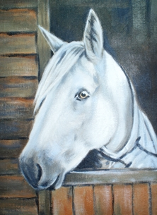 Art Horse painting fine art Cormack I horses personalised online greeting card