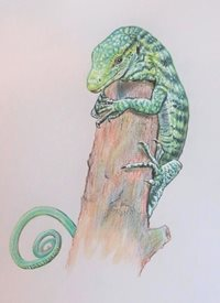 General Varanus Reisingeri, monitor lizard, lizard, reptiles, cute animals, animals, for-him, for-her personalised online greeting card