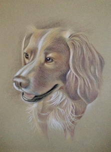 Art Dog Spaniel Brown personalised online greeting card