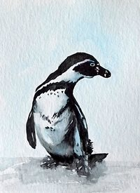 art artwork penguin birds wildlife for-him for-her for-children personalised online greeting card