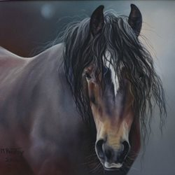 Art horse, animal, pets, pony, equine, cob z%a personalised online greeting card