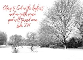 Photography Glory to God in the highest and on earth peace good will toward men Luke 2 14  landscape christian bible snow winter  z%a personalised online greeting card