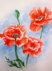 Art By Three  Poppy fineart Poppies  spring flowers watercolours for-him for-her art blank general all occasions mums nans aunts sisters her birthday red blue  floral fineart summer bouquets gardens meadows countryside nature pretty for-her remembrance  personalised online greeting card