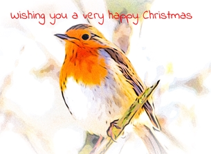 christmas CHRISTMAS, Robin, bird, nature,  birds -child redbreast personalised online greeting card