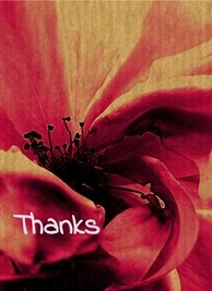 By Eva Wild Rose Thank red rose flower bloom petals wild calm fresh happy arty glad thankful grateful thoughtful pink bright purple violet for-him for-her personalised online greeting card