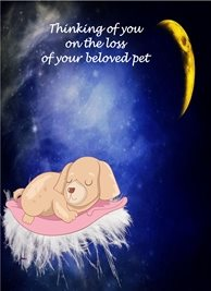 Sympathy Loss of pet Dog Cushion Feathers Moon Yellow Blue Pink Brown Sad  personalised online greeting card