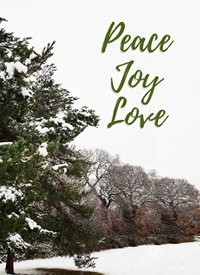 Raluca Curcan Peace Joy Love Christmas peace joy love christian merry  greeting  made with love by raluca curcan snow trees mill hill east z%a personalised online greeting card