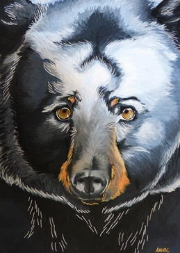 Art bear
