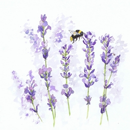 General Bumble Bee, bee, lavender, flower, floral, wild flower personalised online greeting card