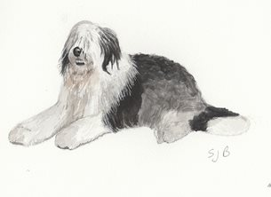 art Dogs   Sheepdog personalised online greeting card