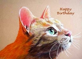 EmilyJane Ginger Birthday  cats  animals pets   mum dad son daughter Nan granddad friend aunt uncle personalised online greeting card