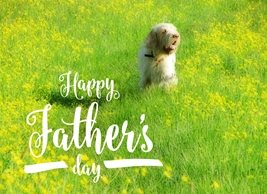 By Eva Father's Day Dog Fathers dog meadow field buttercups yellow flowers grass outside nature landscape for-him personalised online greeting card