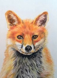 art fox foxes animals wildlife  dad son  granddad friend uncle mum daughter Nan aunt  personalised online greeting card