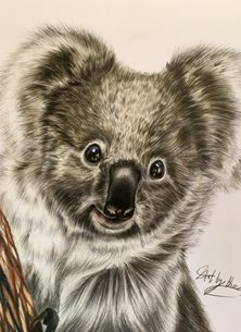 Art By Three  Koala Bear art koalas bears animals wildlife safari zoon australia cute kids mums dads all occasions  for-him for-her for-child personalised online greeting card