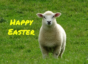 easter Easter lamb sheep animal farm wool New Zealand personalised online greeting card