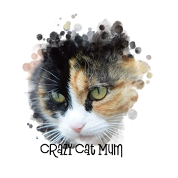 General Cat, Animal, Humorous, Birthday, Mothers Day, For-Her personalised online greeting card
