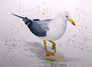 art artwork seagull birds wildlife gulls for-him for-her personalised online greeting card