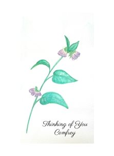 Art thinking Herbs gardens watercolour personalised online greeting card