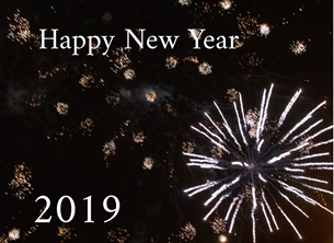 O Scrimshaw Photography New Year 2019 Christmas 2019 New Year fireworks celebrations photography  personalised online greeting card