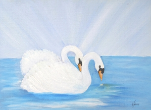 Swans on Open Water