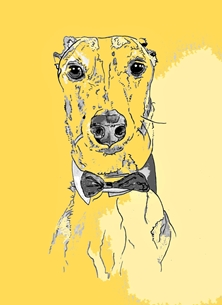 Art whippet italian greyhound greyhound dog pet popart abstract modern art  personalised online greeting card