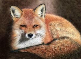 General fox animal wildlife art personalised online greeting card
