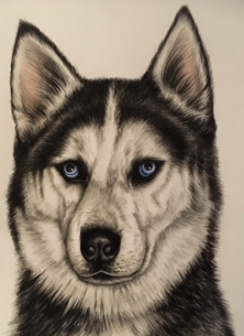 Art By Three  Husky Art Husky dogs for-him for-her pets animals  personalised online greeting card