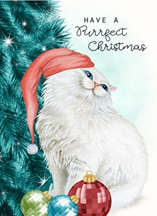 christmas CHRISTMAS cat celebrate personalised online greeting card