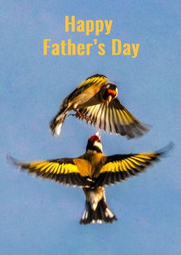 Goldfinch father's day