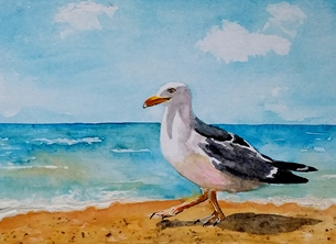 art artwork seagull birds gulls wildlife for-him for-her personalised online greeting card