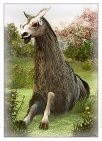 Art General llama hippy nature animal funny cool personalised online greeting card