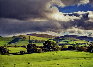 scenic, sheep, animals, countryside, hills, meadow, evening, serene, peaceful, scotland, landscape,  inspiration, happy, joy, optimistic, peaceful, tranquil, serene, warm,  personalised online greeting card