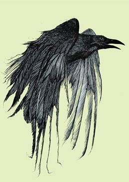 art RAVEN, BIRD, BEAK, FEATHERS, WINGS personalised online greeting card