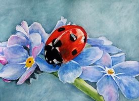 art artwork ladybird flowers for-her personalised online greeting card