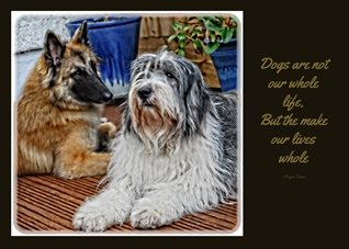 General Dog, Belgian Shepherd, Polish Lowland Sheepdog, Terveuren personalised online greeting card
