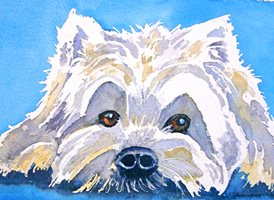 General dogs animals pets west highland terrier z%a personalised online greeting card