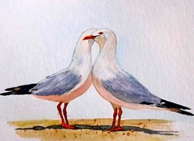 General artwork seagulls birds wildlife for-her for-him  personalised online greeting card