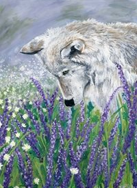 Black Bunny Designs and Greetings Lavender Wolf General Wolves, wolf, lavender, spring, flowers, wildflowers, meadow, daisies, animals, wild spirit  acrylic, painting personalised online greeting card