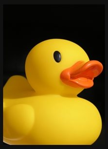 general yellow duck plastic rubber colourful humour  personalised online greeting card
