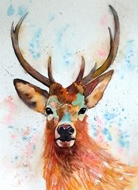 EmilyJane Deer art artwork deer animals wildlife for-him for-her  personalised online greeting card