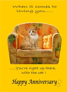 Anniversary For Him For Her Chair Cat Orange Black Ginger  personalised online greeting card