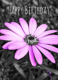 Birthday For her, birthday, colour, flower personalised online greeting card