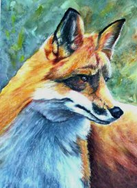 art artwork fox foxes animals wildlife for-him for-her personalised online greeting card
