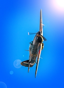 photography  For-him, RAF, Hurricane, aeroplane, airplane, plane, aircraft,   blank, photograph personalised online greeting card