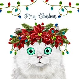Christmas Cat, Persian, White, Lights, Poinsettas personalised online greeting card