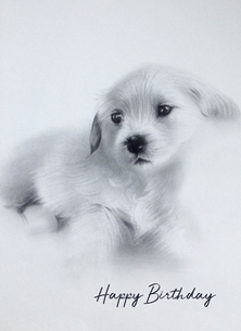 Birthday birthday puppy personalised online greeting card