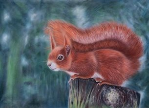 Art red squirrel animal wildlife nature personalised online greeting card